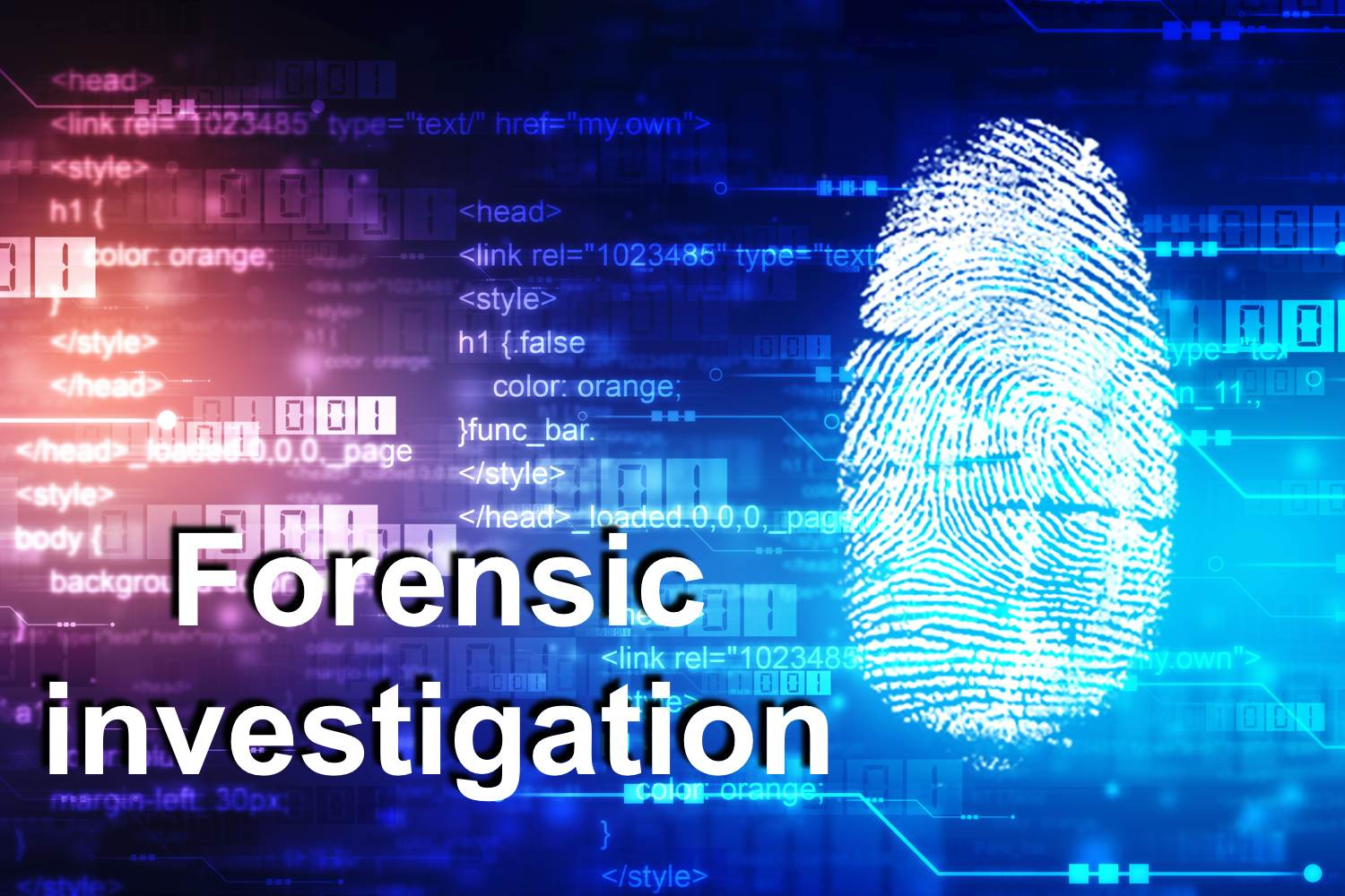 Forensic investigations - a holistic approach